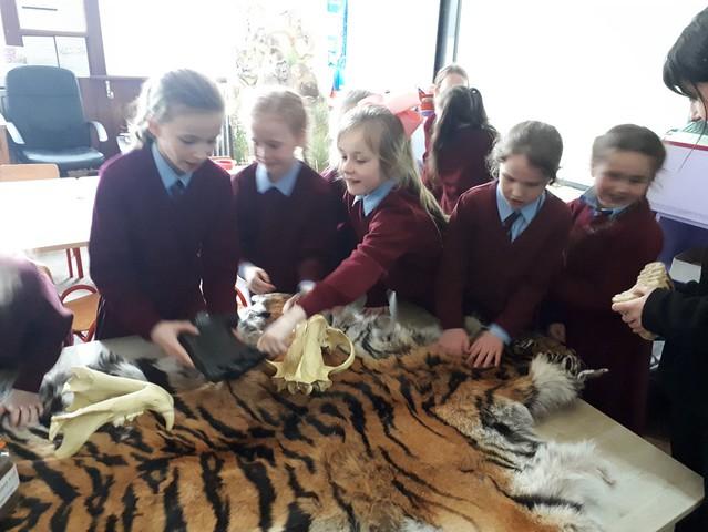 Dublin zoo Visit