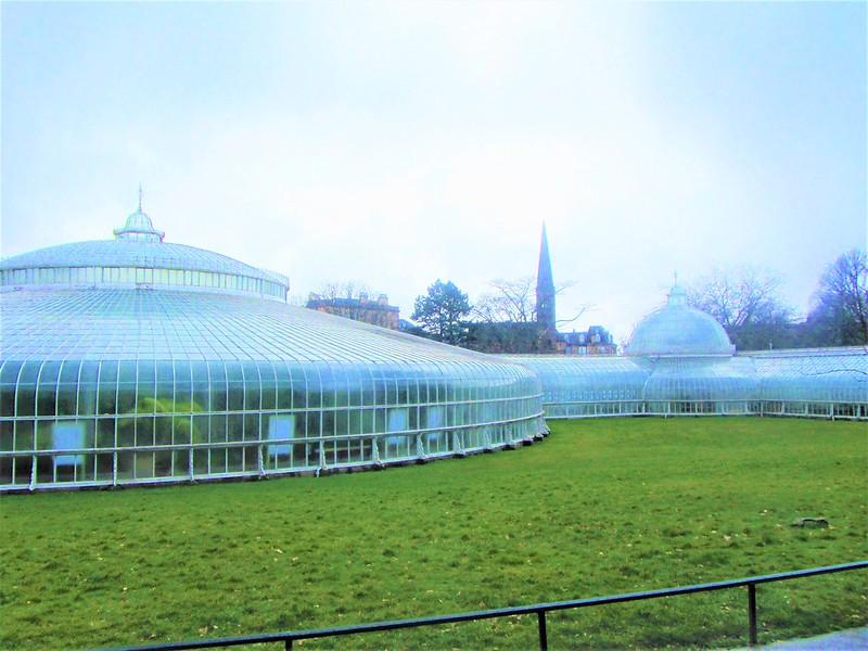 glasgow-ecosse-botanic-gardens-kibble-palace-thecityandbeauty.wordpress.com-blog-voyage-IMG_0072 (4)