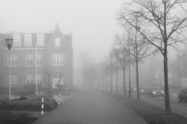 The great fog, RICOH PENTAX K-3, HD PENTAX-DA 35mm F2.8 Macro Limited