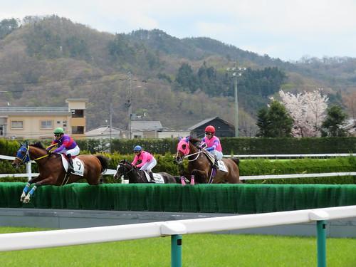 福島競馬場の障害を飛越する馬たち