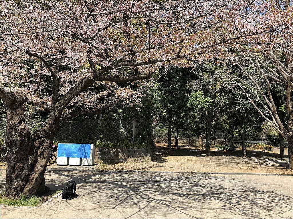 20180331_光ヶ丘 (7)