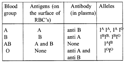 NEET AIPMT Biology Chapter Wise Solutions Body Fluids and Circulation - 37 EXPLANATION