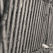 a bit sloping fence by kinaaction