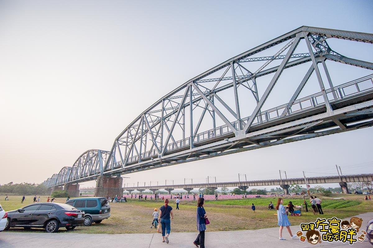 舊鐵橋(屏東端)花海-4