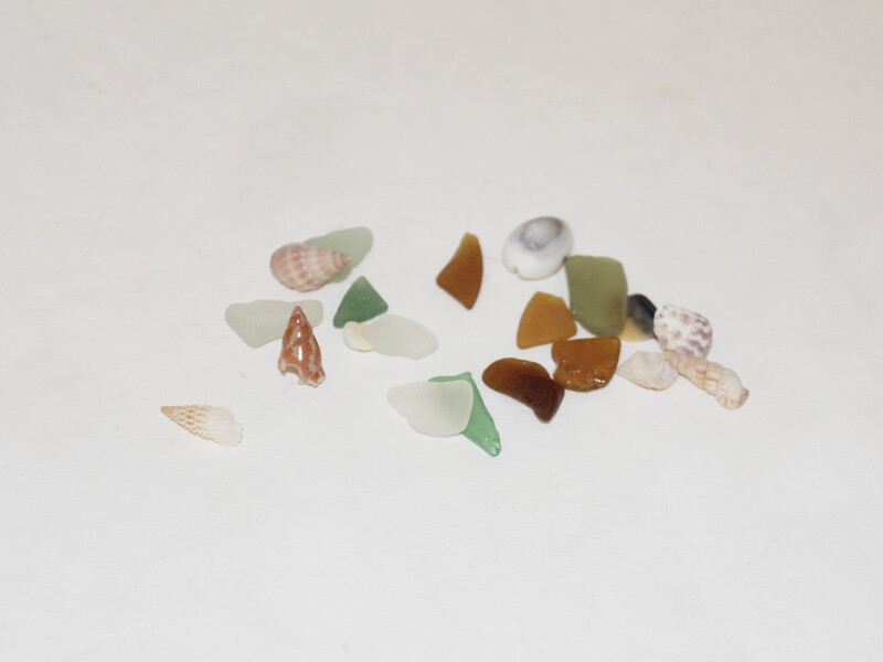 shells and glass