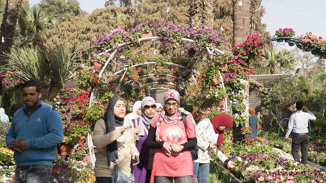 Under the arcs of flowers at Egypt's Spring Flowers Fair 2018