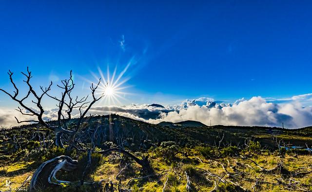 Piton Textor - Ile de la Réunion