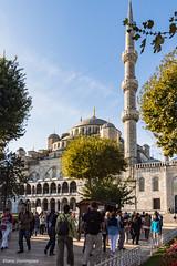 Turquie Istanbul Mosquées Octobre 2014