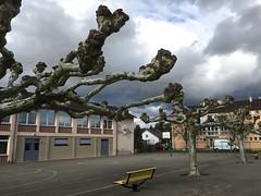École du centre / Kingersheim / Haut-Rhin / Alsace