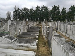 West End Chesed V'Ameth Cemetery