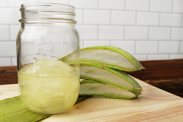 Header-Aloe-In-Jar