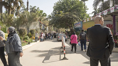 At the entrance of Egypt's Flowers Fair 2018
