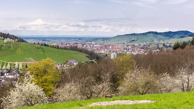 Oberkirch_031