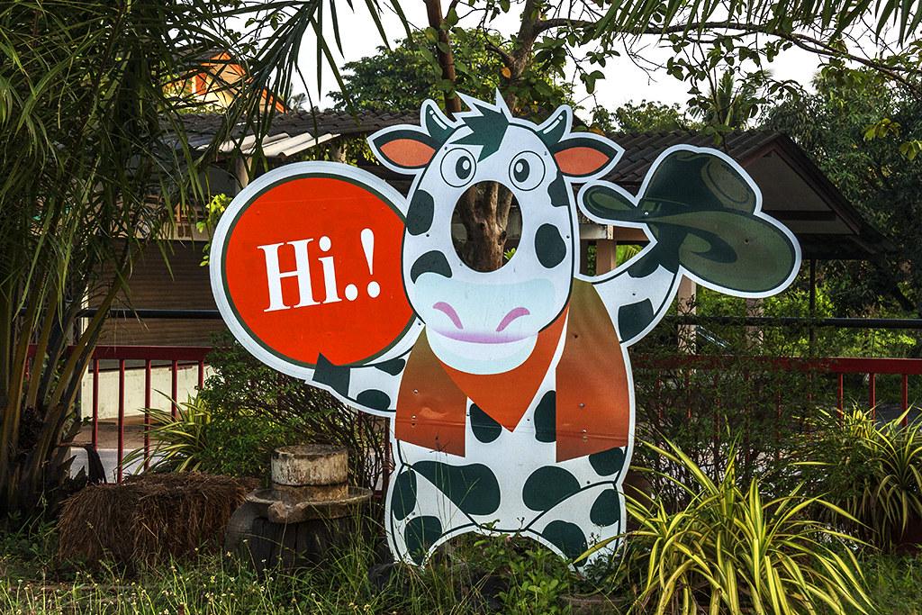 Cartoon cow saying hi--Chanthaburi