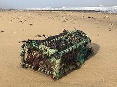 East Runton Beach Clean - Finds