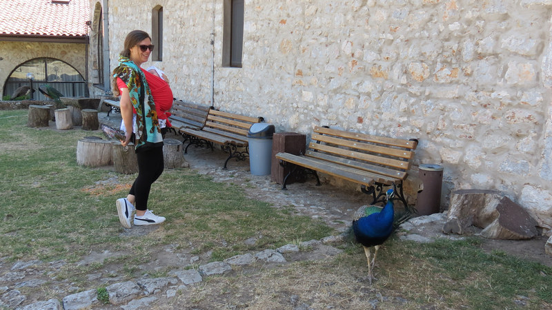 Que ver Lago Ohrid Macedonia 32