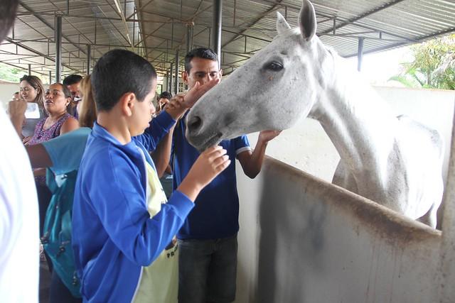 02.04.18 Alunos autistas participam do Blue Day em atividade com cavalos.