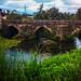 Ponte Ferreira