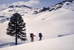 Invierno en los Andes