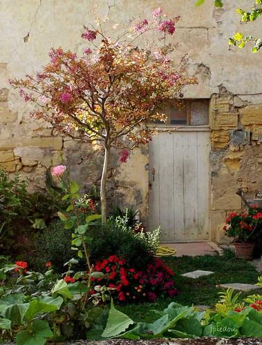 Jardin  (Castillon-la-Bataille - Gironde)
