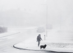 Man & dog in snow