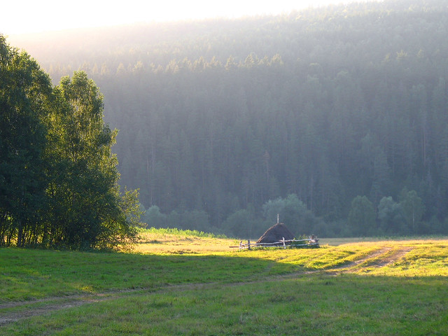Утренний свет – золотой, Canon POWERSHOT A640