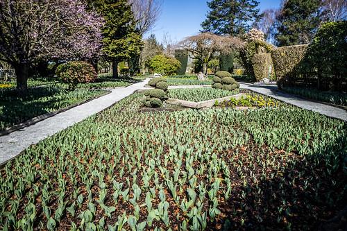Roosengarde Gardens-003
