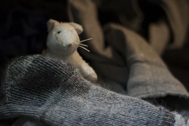 Laundry rat