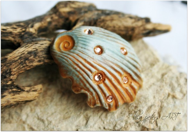 seashell shank button