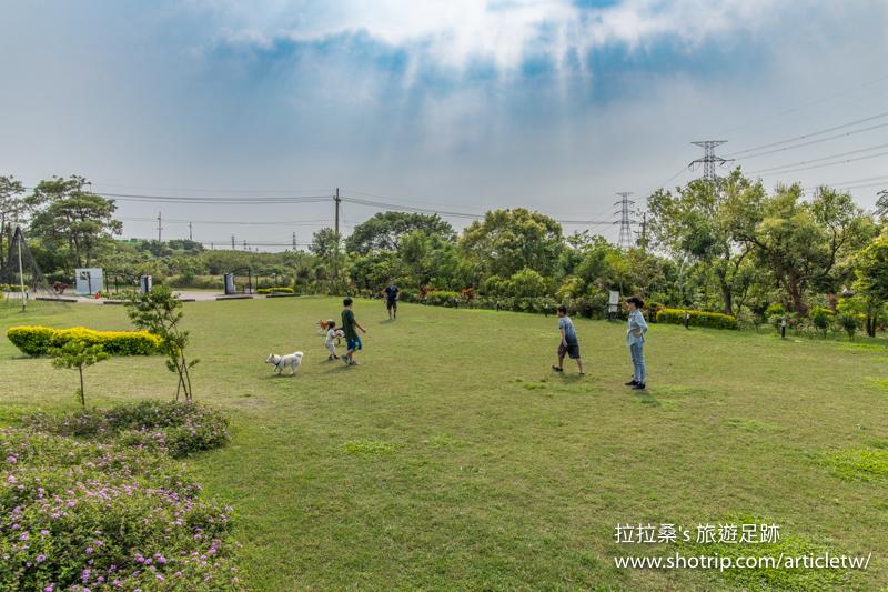 台中綠朵休閒農場,能遠眺市景的白鋼琴景觀餐廳,適合親子、寵物同樂的大片綠草地,白天、黃昏各有風情