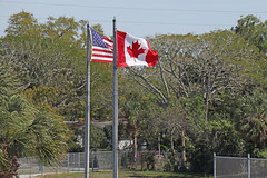 Two flags, Dunedin Stadium Dunedin Florida