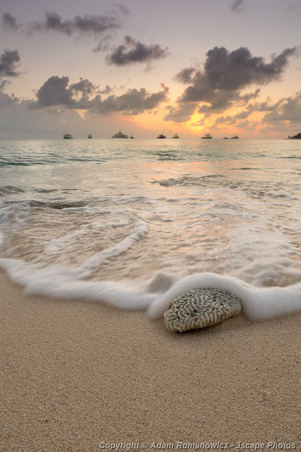Grand Cayman Beach Coral Waves at Sunset