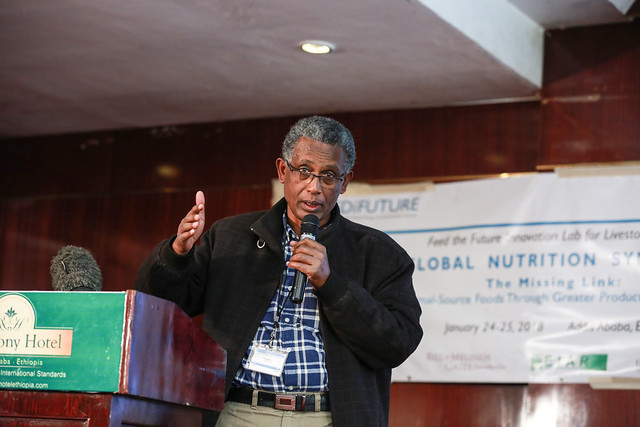 Adugna Tolera from Hawassa university makes presentation