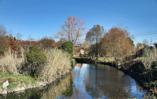Rio Pavia - Portugal 🇵🇹