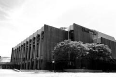 Civic Center 1