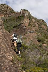 Climbing up Mt Beerwah