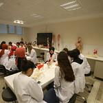 Anatomi Laboratuvarı 3