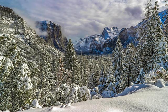 Dreamland in Yosemite, Canon EOS-1D X MARK II, Canon EF 24mm f/1.4L II