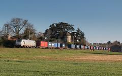 Du container à Fleurville