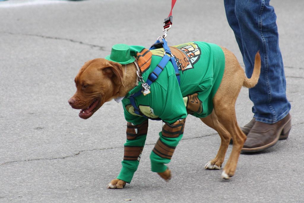 St. Patrick's Day Parade 03