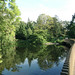 View from the Sackler Bridge, Kew Gardens (4)
