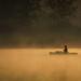 Hazy Like a Fox by Carl's Captures