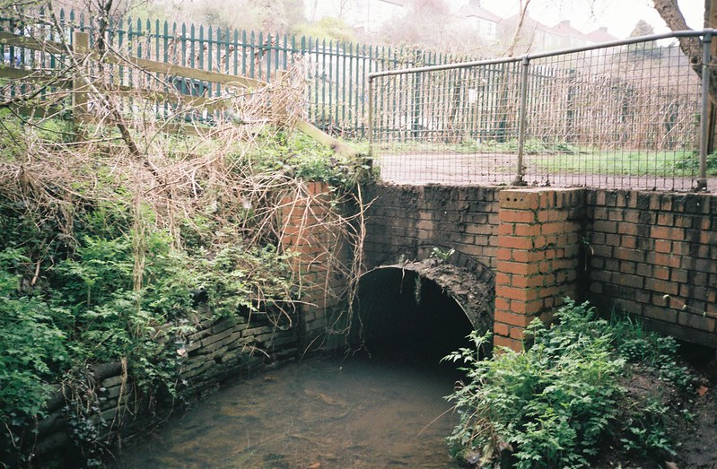 Commbe Brook coming above ground again - through the moaning pipe