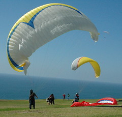 paragliding, parachute, air sports, sports, parachuting, windsports, extreme sport,