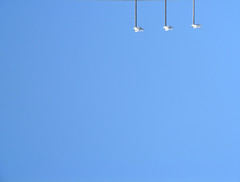 iluminando nuestro propio cielo