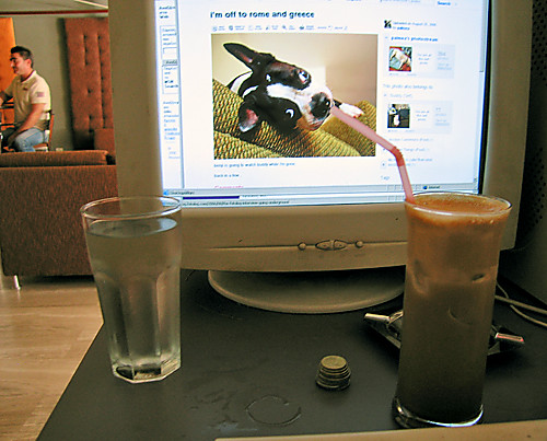 buddy enjoys a frappe at an internet cafe in greece