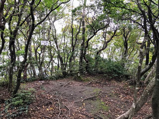 仙ヶ岳 仙鶏尾根 東峰