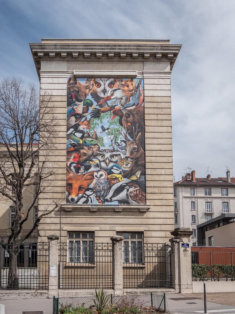 Street art lyonnais...et M.Paul 39290186560_9d409c7d2e_b