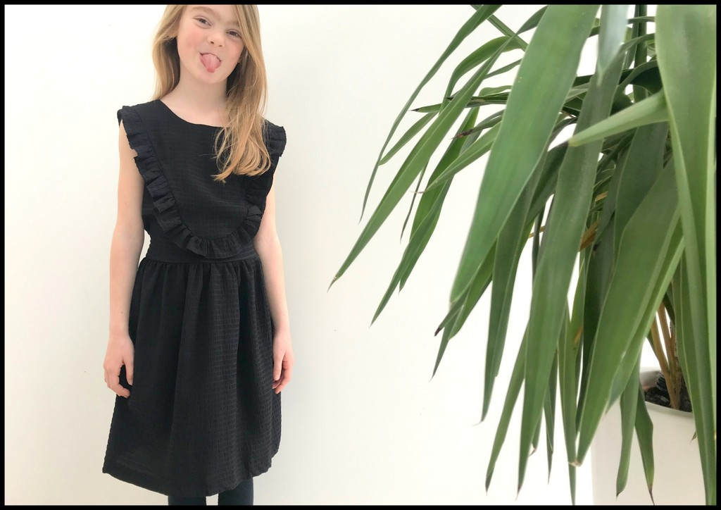 little black robin dress 1