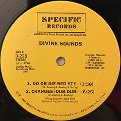 DIVINE SOUNDS:CHANGES(LABEL SIDE-B)